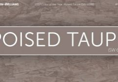 2017-Color-of-the-Year-Poised-Taupe-Sherwin-Williams