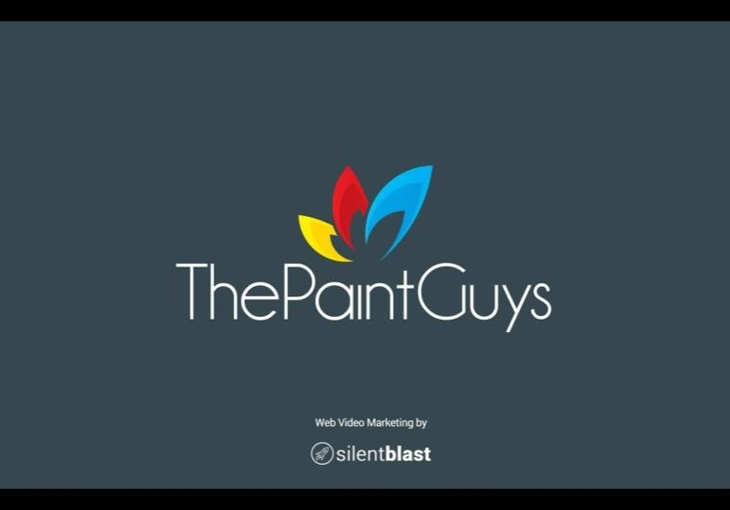 The-Paint-Guys-Promo-Video
